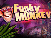 Онлайн-аппарат Funky Monkey