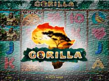 Игровой аппарат Горилла